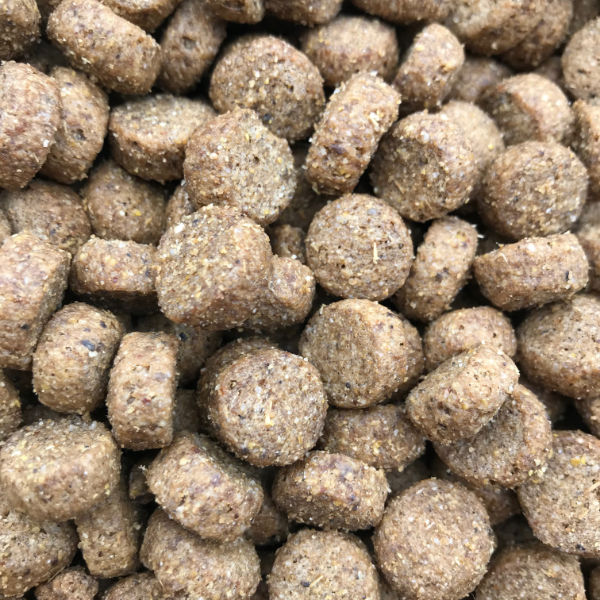 a photo of this working dog food